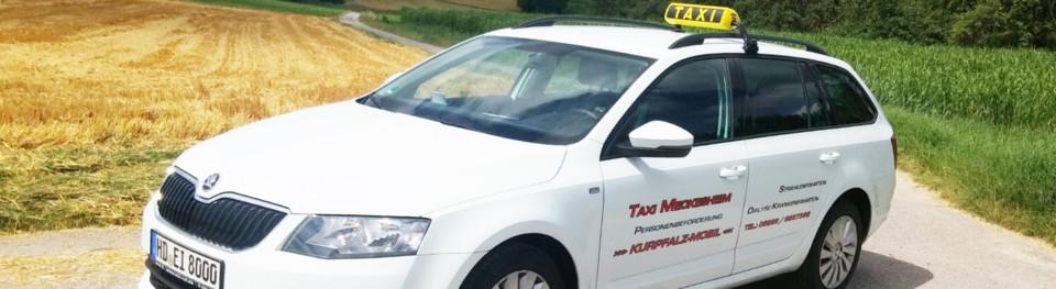 taxi kurpfalz mobil tipps uns hilfe bei krakenfahrten. Black Bedroom Furniture Sets. Home Design Ideas